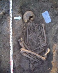 One of the skeletons found at Ballyhanna. Photo from QUB.