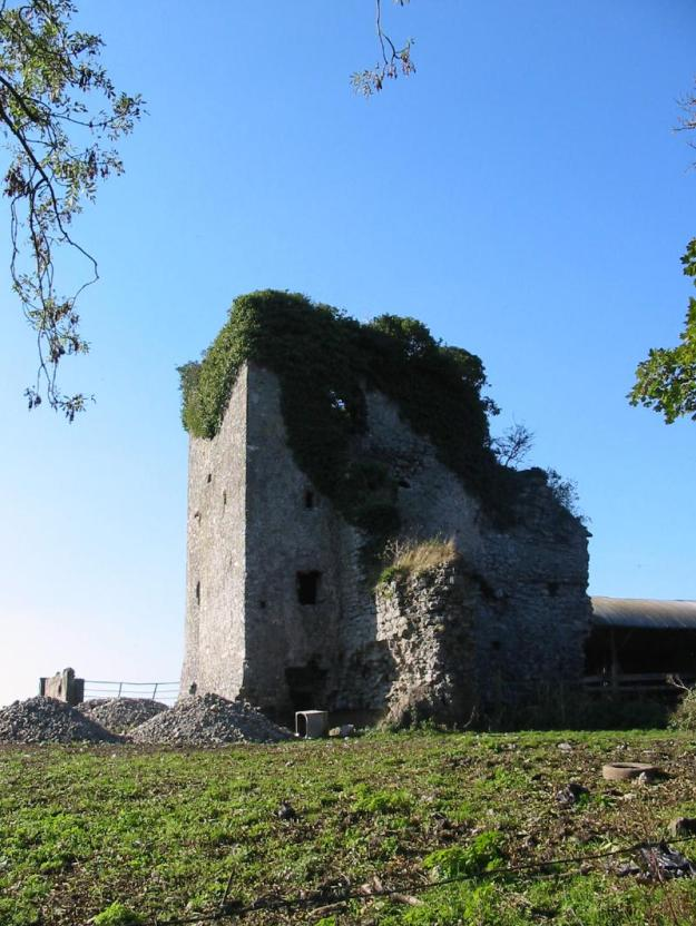 The ruins of Brittas Castle, main seat of the Bourkes. This was a home, while Castle Troy was a purely military castle.