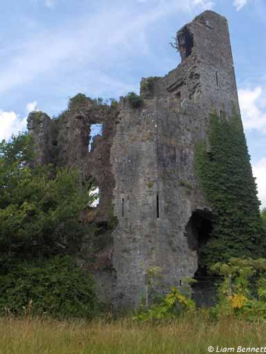 castletroy1