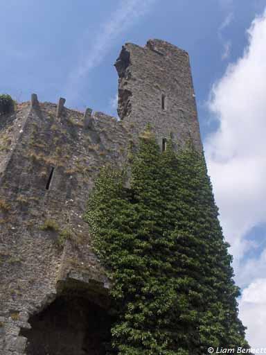 castletroy3