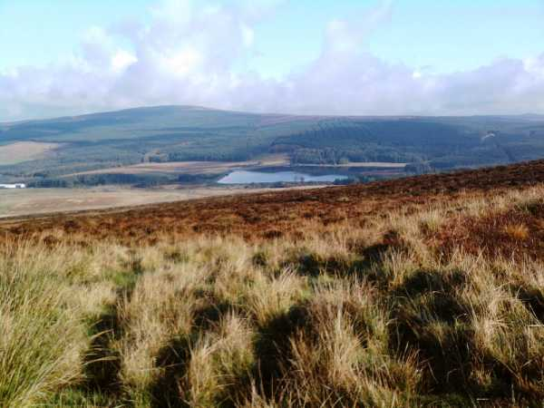 Slieveanorra Forest where the last bloody battle between the MacDonnells and McQuillans was fought.